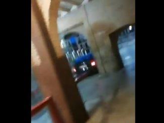 Foto: Policía Municipal de Tudela
